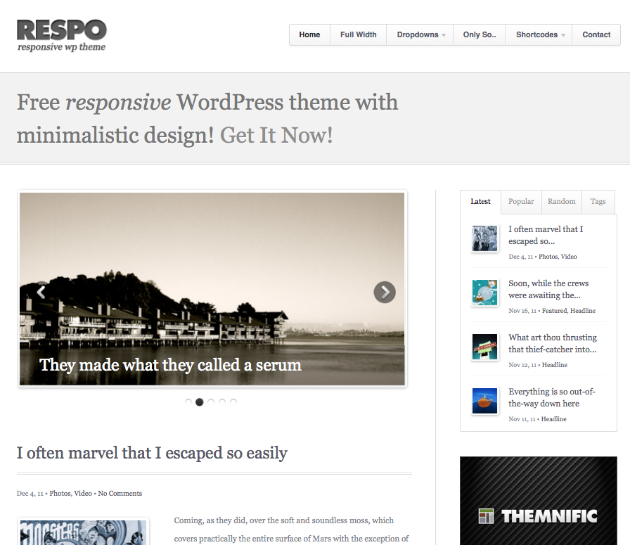 Respo Free responsive Wordpress Theme