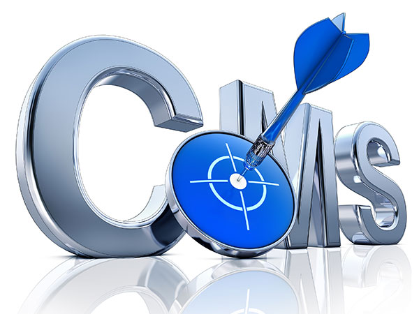 Which CMS is Right For You