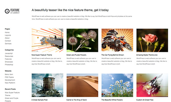 feature Free WordPress Theme