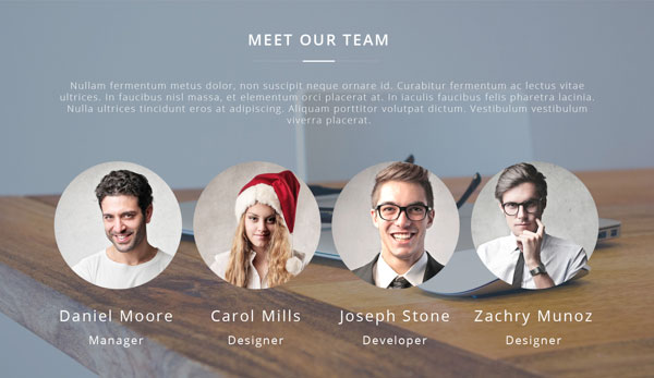 about meet website team
