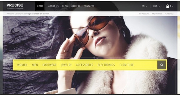 Precise: Responsive WordPress E-Commerce Themes